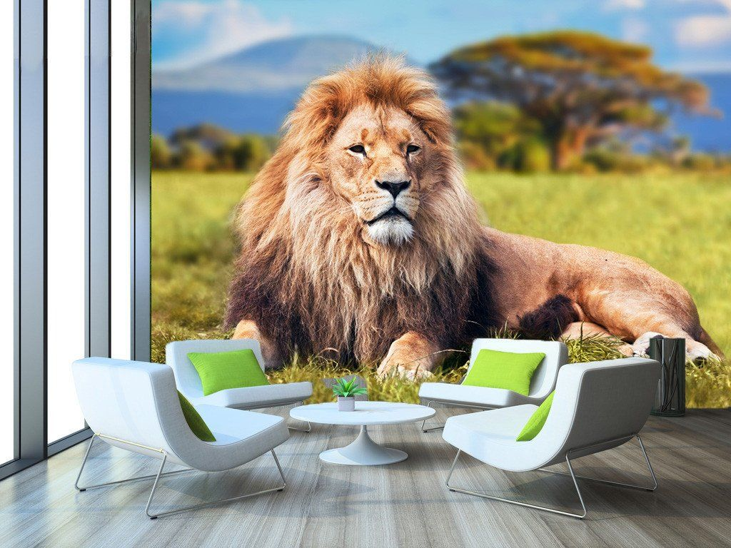 3D Prairie Lion 5 Traditional wallpaper, Wall murals
