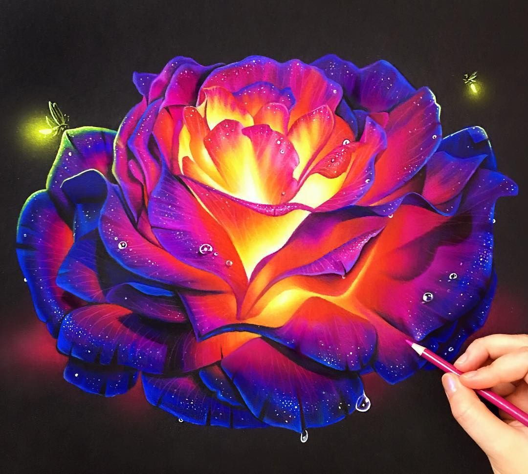 Colored pencil glowing rose on black paper the best way