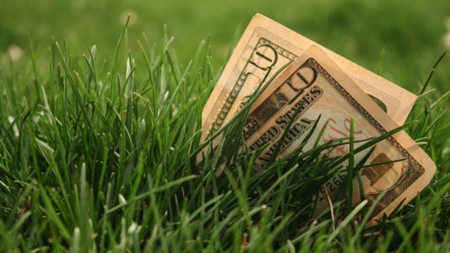 How Much Does It Cost to Fertilize Your Yard? Lawn care