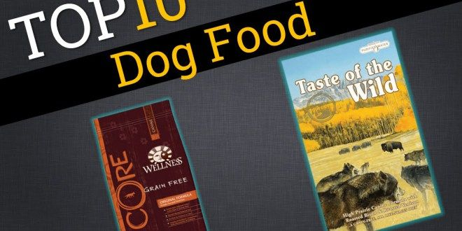 Top 10 Dog Food Brands | Best Dog Foods #Top10DogFoods #Top10 #Top10DogFoodBrands #BestDogFoods #DogFood #DryDogFood #FoodForDog #BestDogFoodBrand #PuppyFood #Bestpuppyfood