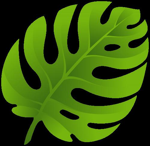 Moana leaf. Pin by on stencil