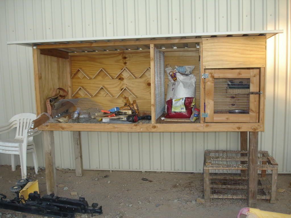 free pigeon loft plans | Birmingham Roller Pigeons For Sale and Discussion Board: THOUSANDS OF ...