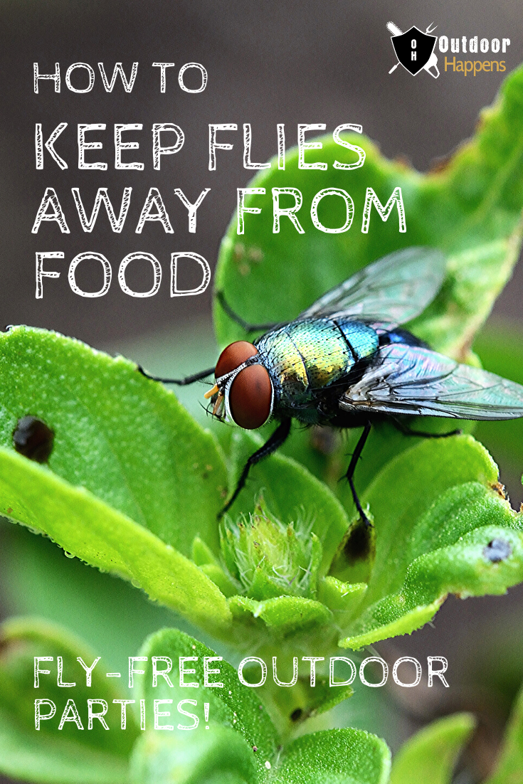 11 Ways To Keep Flies Away From Food At Your Next Outdoor Party Keep Flies Away Fly Repellant Diy Flies Away