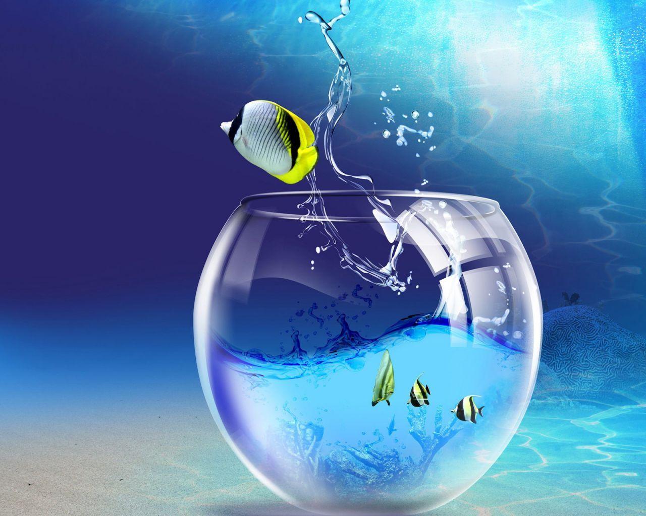Free Matrix 3D Moving Screensavers | com 3D Fish School