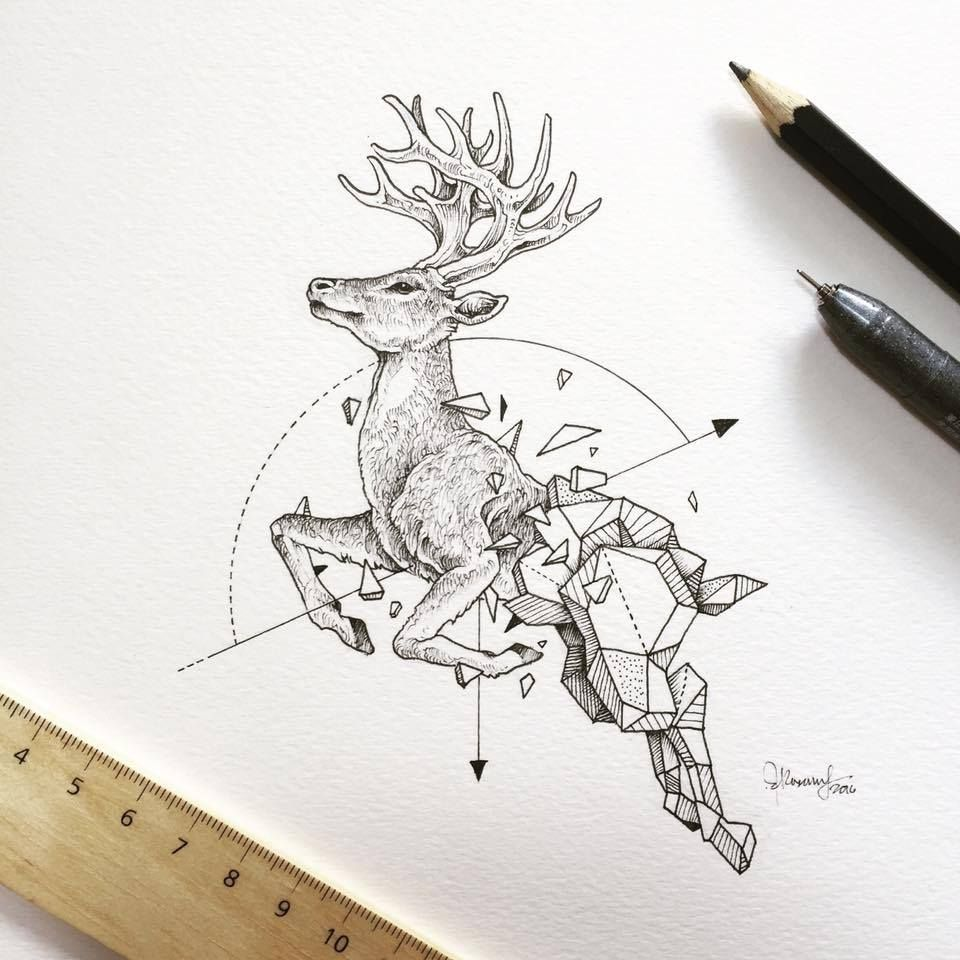 Lovely Half Geometrical Drawings Of Wild Animals 14