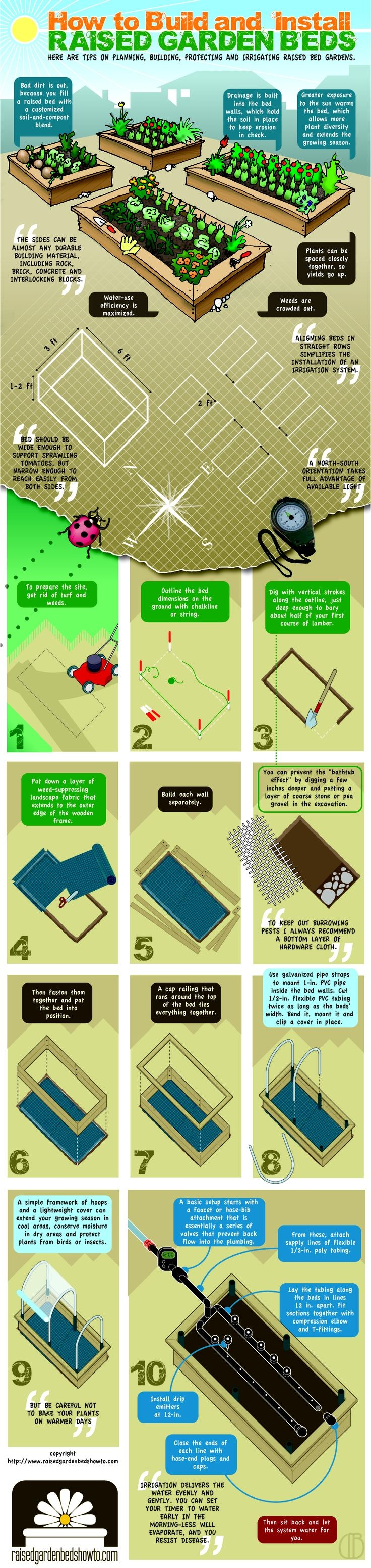 Diy raised beds growing food anywhere infographic gardening