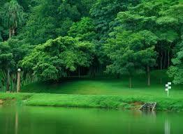 Resultado de imagen para paisajes tipicos de villa hermosa tabasco