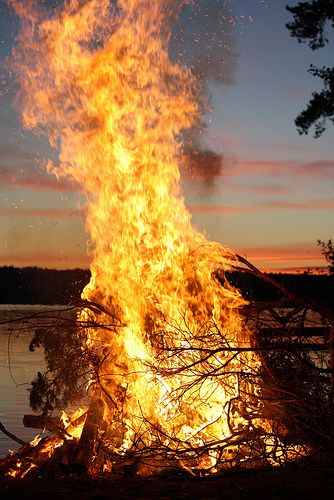 bonfire margay magic pinterest scenery photography fire image rh pinterest com