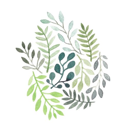 1minnamay_plants.png