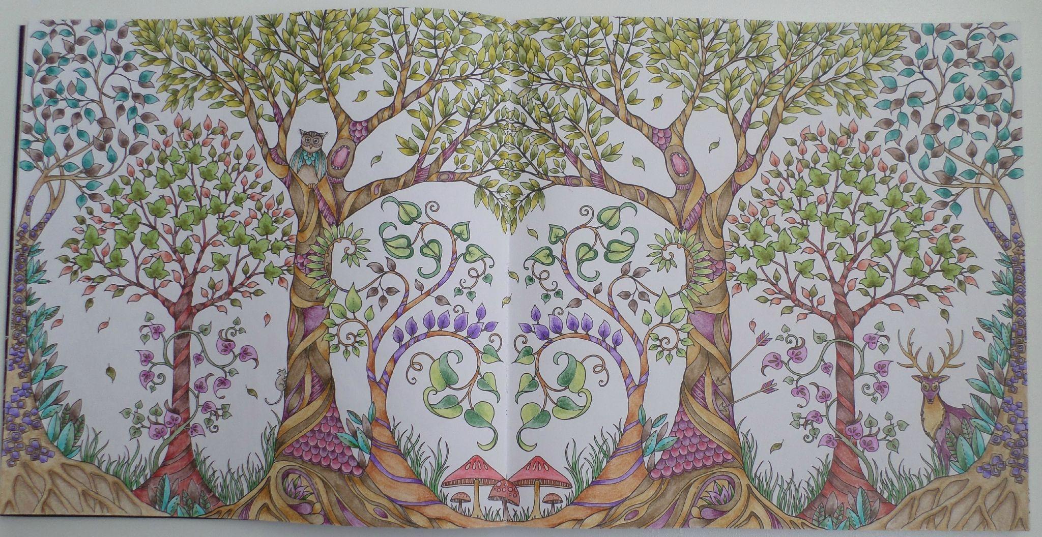 Coloriage Adulte Foret.Coloriage D Une Foret Enchantee Steffy Elsass Crea