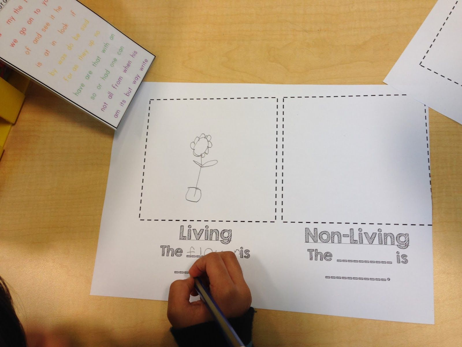 Completely Kindergarten Living And Non Living Unit Class