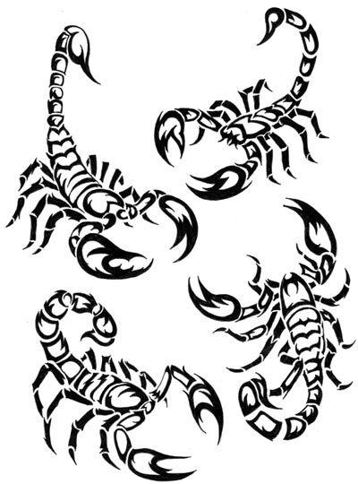 Scorpion Colouring Pages Recherche Google Clipart Design