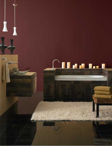 Sherwin Williams 2013 Color Forecast Midnight Mystery Rustic Red SW 7593