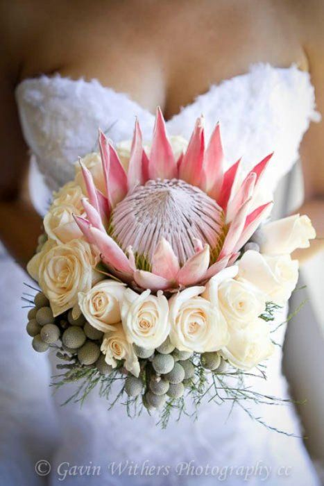 Floral Services South Africa Wedding Flowers Wedding Bouquets Africa Wedding Wedding Flowers
