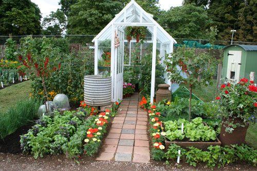 Hampton court flower show 2009 the growing tastes for Garden allotment ideas