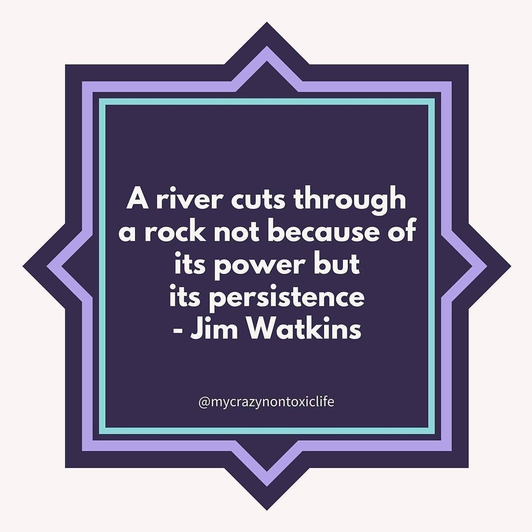 Persistence is why I feel way better now than I did when I was first diagnosed with #hashimotos #hypothyroidism.  If I hadn't persisted in researching and making lifestyle changes I'd probably still be on medication and feeling terrible! #dailyinspiration
