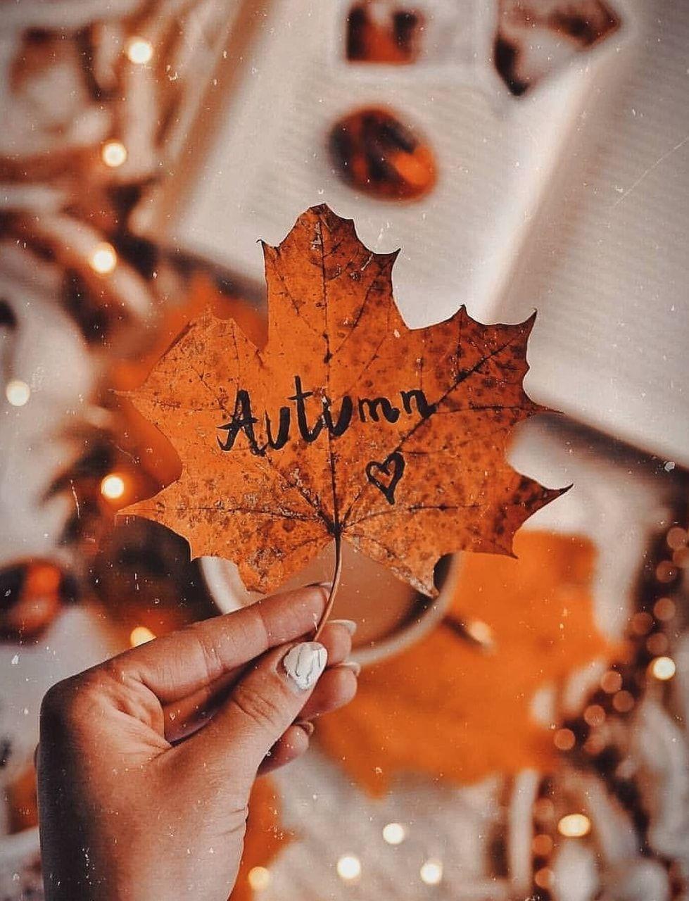 Autumn ♥ uploaded by ₛₕᵢfₐ on We Heart It