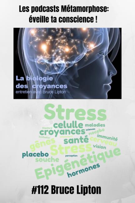Bruce Lipton Les Mecanismes Du Stress Sur La Sante Epigenetique Stress Meditation Pleine Conscience
