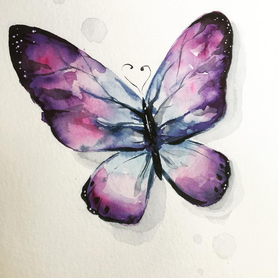 Watercolor Butterflies Butterfly Art Illustration Drawing