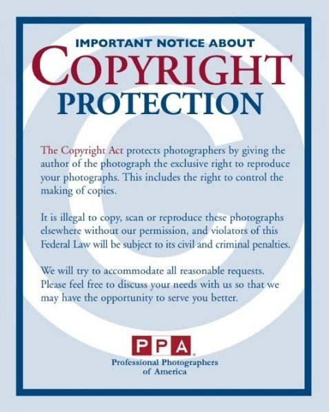 11+ Copyright Notice Templates Free Printable Word  PDF - copyright notice template