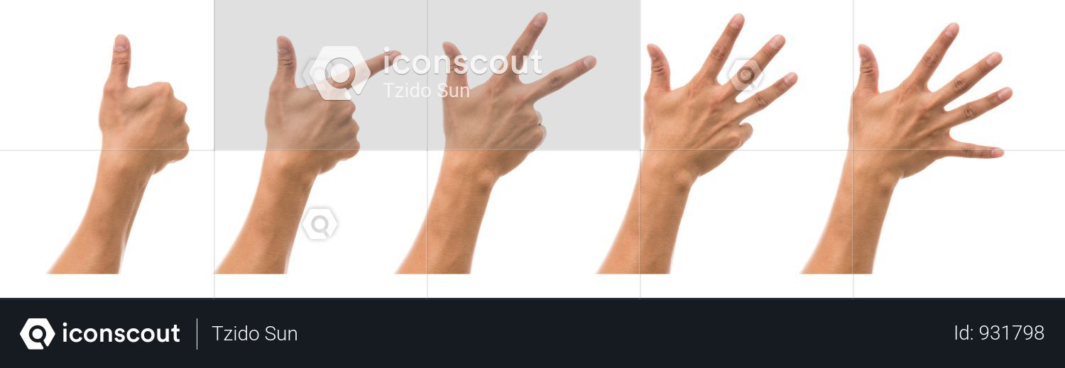 Premium Sum 5 Picture Of Man Hand In Back Side With Show Number Collection Over White Background Photo Download In Png Jpg Format White Background Photo White Background Male Hands