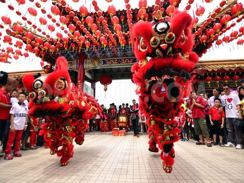 Image result for Chinese lion dance platform creation