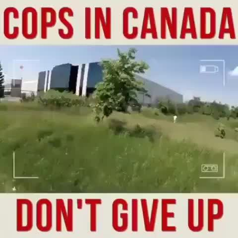 I want to move to Canada is part of Funny - Watch the video and join the fun convo with 9GAG community