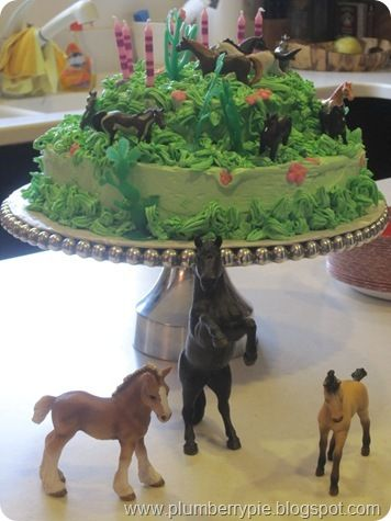 horse hoedown country party cake My 9th birtday Pinterest