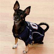 Houston Texans Navy Blue Dog Jersey  NFL  NFLDogProducts  NFLPetProducts   DogProducts  PetProducts  HoustonTexans  HoustonTexansDogs   HoustonTexansPets ... 76ea18b9d