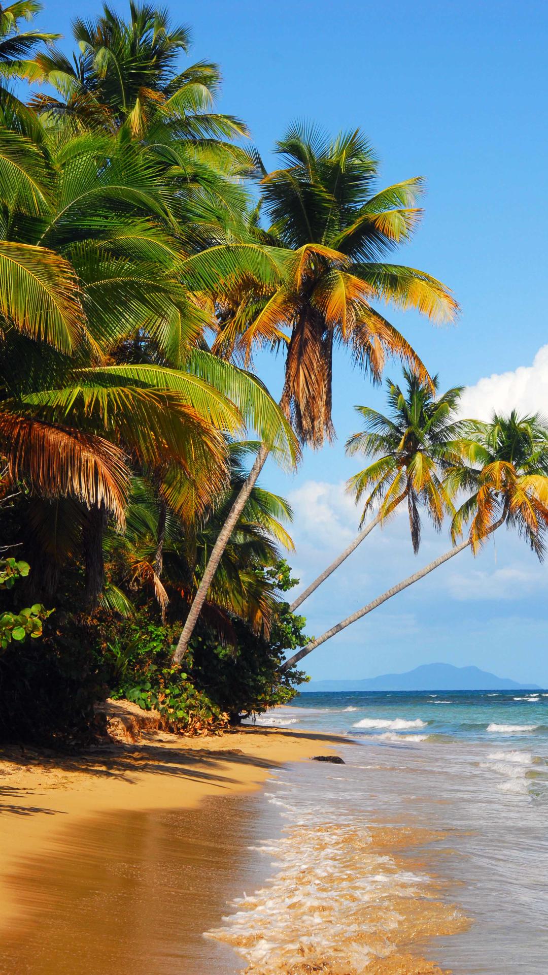 Puerto Rico Beach Iphone 6 Plus Wallpaper 1080x1920 Beautiful Landscapes Nature Photography Beach Landscape