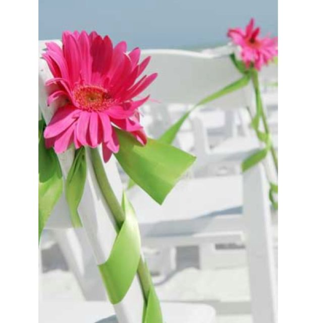 Gerber daisy aisle decor gerber daisies wedding flower ideas pink and green gerbera daisy idea my wedding colors and flowers junglespirit Choice Image