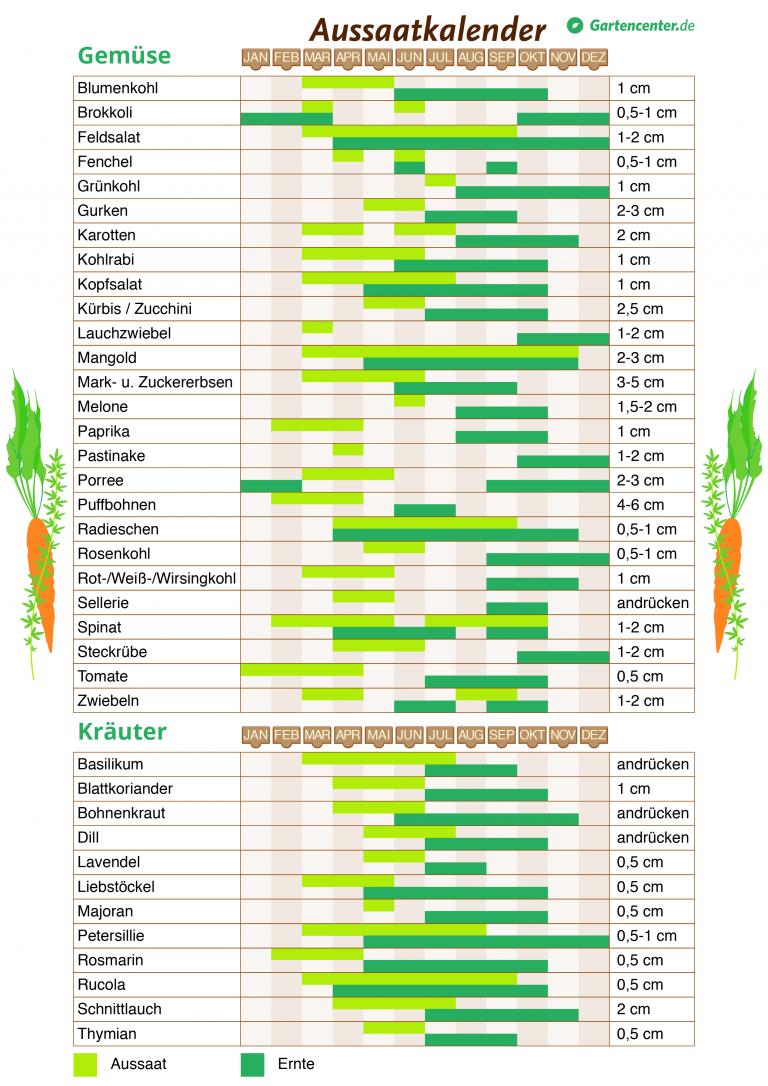 Pflanzkalender 2018: Wann man Gemüse und Kräuter pflanzen kann #kleinegärten