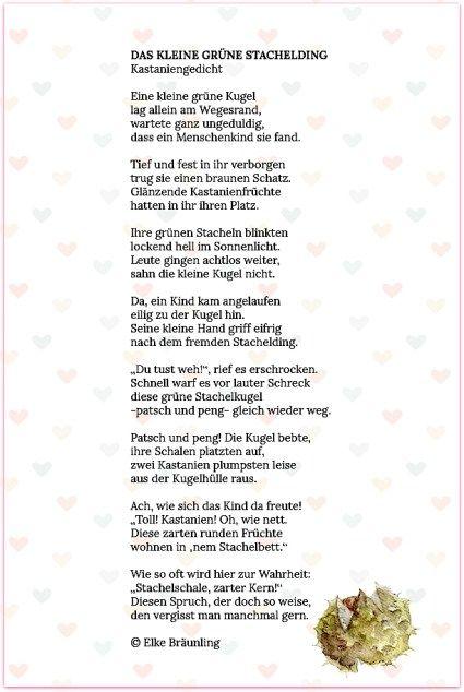 Das Kleine Grüne Stachelding Gedichte Für Kinder Gedicht