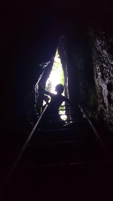 Escalera de descenso a cueva de los Tayos. Pastaza. By P. Vicuña