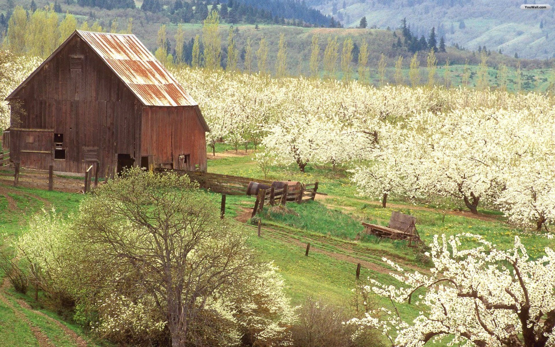 Wallpaper Spring Wallpapers High Fields Youwall Resolution Flower Little Quality Spring Wallpaper Old Barns Spring Scene