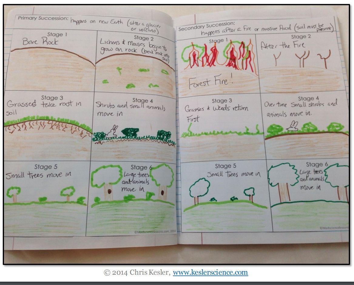 Ecological Succession 5e Lesson Plan