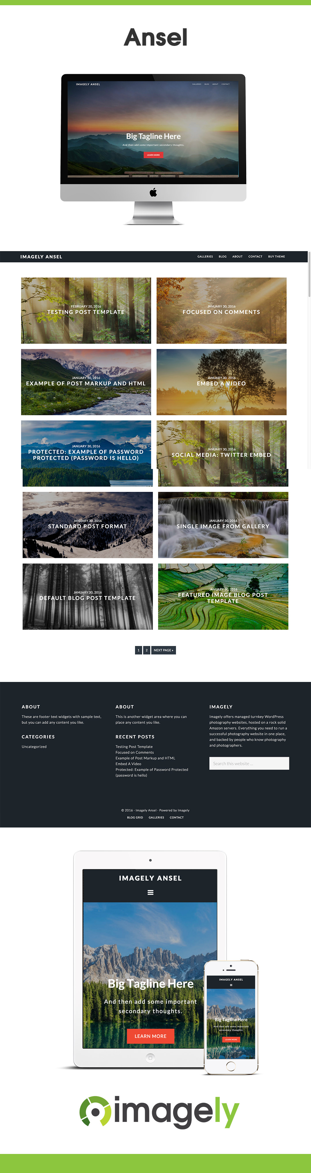 Ansel - Photography Theme for WordPress | Photography themes, Ansel ...