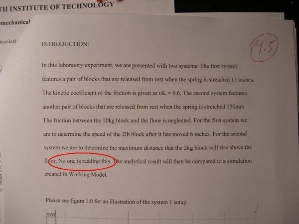 Whoever graded this essay.   35 People Who Will Make You Feel LessLazy