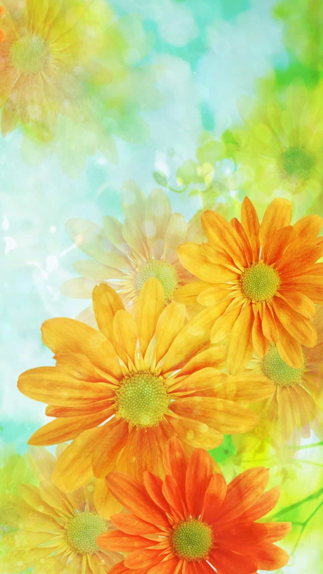 خلفيات ايفون Flower Iphone Wallpaper Vintage Flowers Wallpaper Background Hd Wallpaper