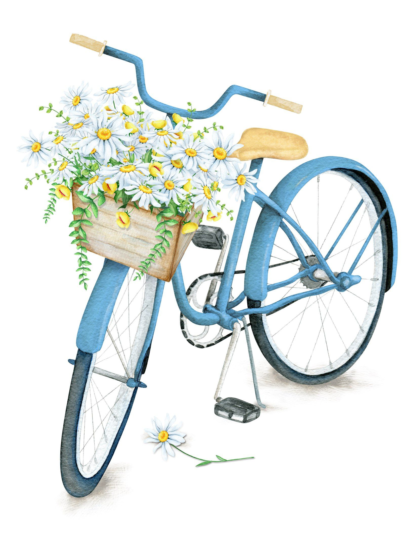 Pin de Babrush en odd pictures | Pintura de bicicletas