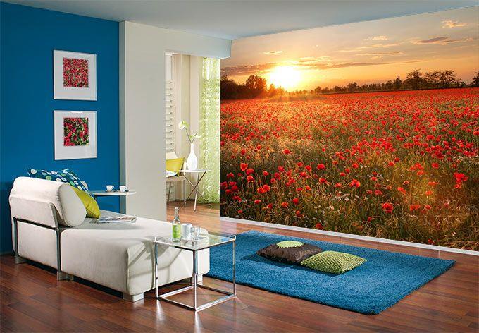fototapete mohnfeld im sonnenuntergang fototapeten pinterest mohnfelder sonnenuntergang. Black Bedroom Furniture Sets. Home Design Ideas