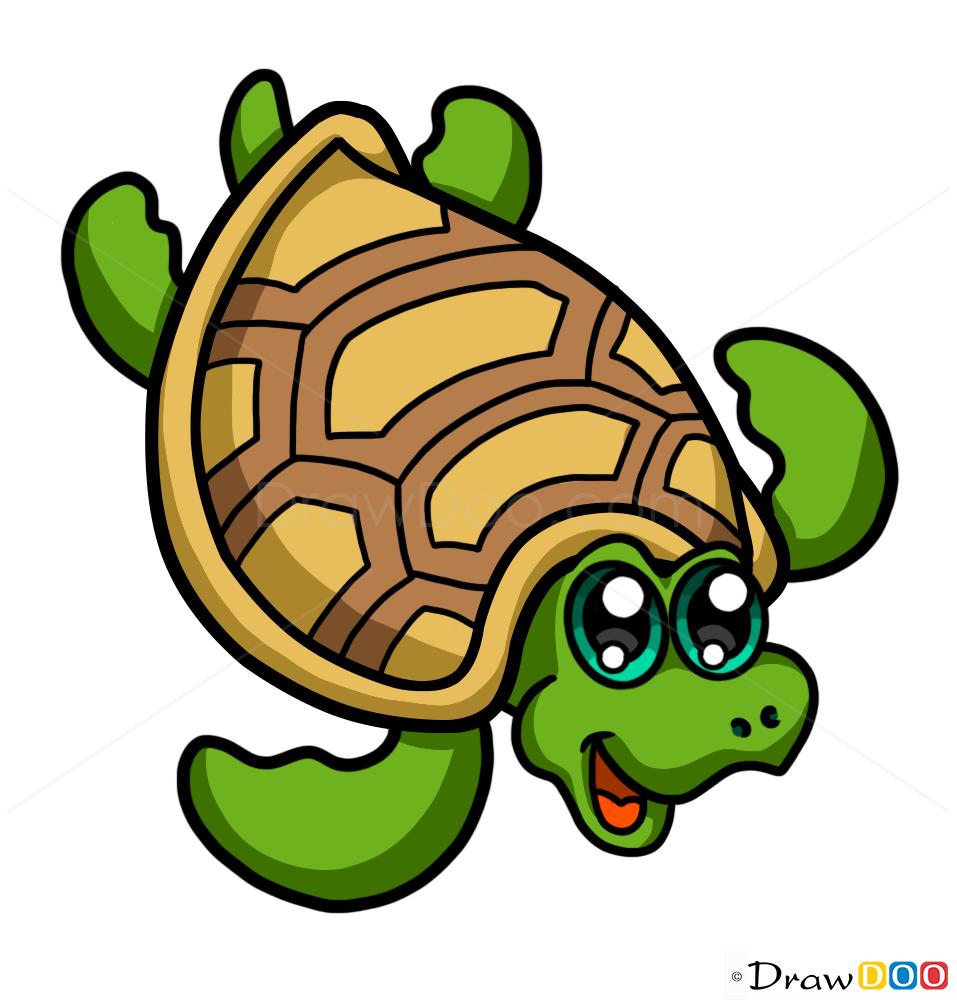how to draw nice turtle cute anime animals