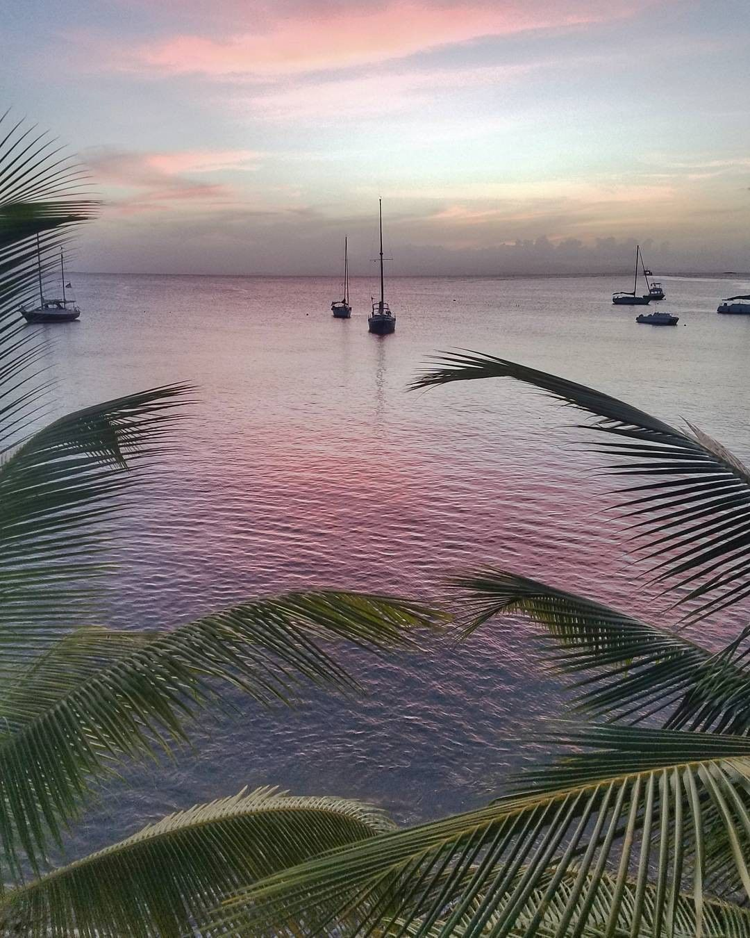 Discover Puerto Rico On Instagram Fact Vieques Is Home