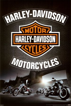 Harley Davidson - Leather Posters na AllPosters.com.br