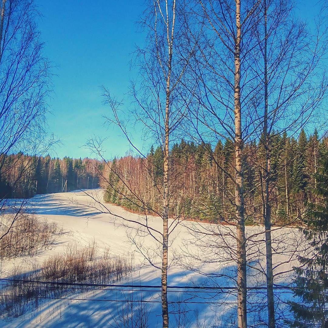 Kevät Kuopiossa -3 C uusi lumi yöllä. #Kuopio #spring