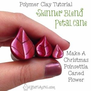 Skinner Blend pétalo de la flor de caña - Poinsettia Parte KatersAcres 1 porciones