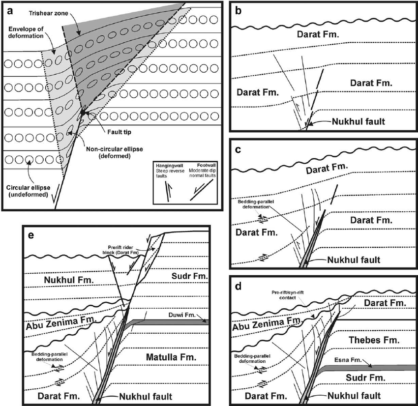 geometry and architecture of faults in a syn
