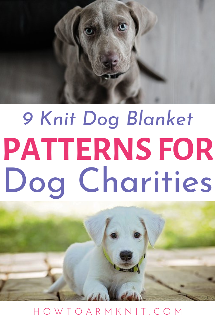 Knitting Dog Blankets For Charity Plus 9 Patterns Happiness Is Handmade Dog Blanket Knitting Patterns Free Dog Dog Charities