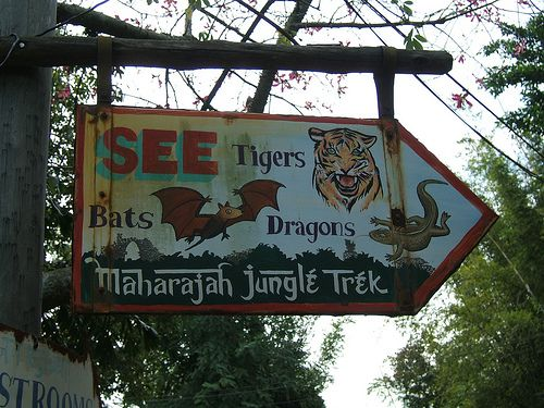"""""""Animal Kingdom"""" sign.  Enjoy Disney's economic conglomeration or not, their parks have a GREAT sense of production detail. A series of hand-designed signs are prevalent throughout Animal Kingdom, replicating the font/art style of way finding props from parts of Africa, Asia and South America."""