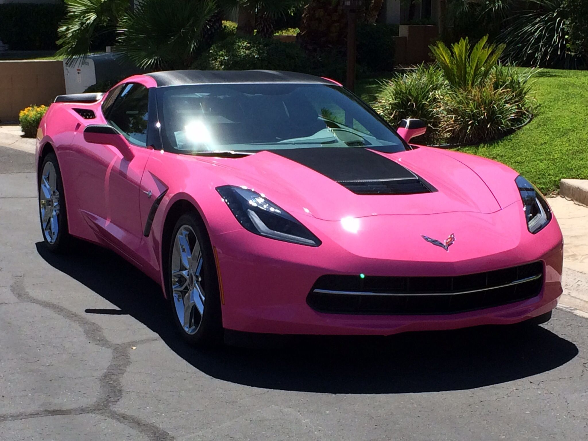 Hot pink 2014 corvette c7 stingrayim sorry but this is just hot pink 2014 corvette c7 stingrayim sorry but this sciox Images